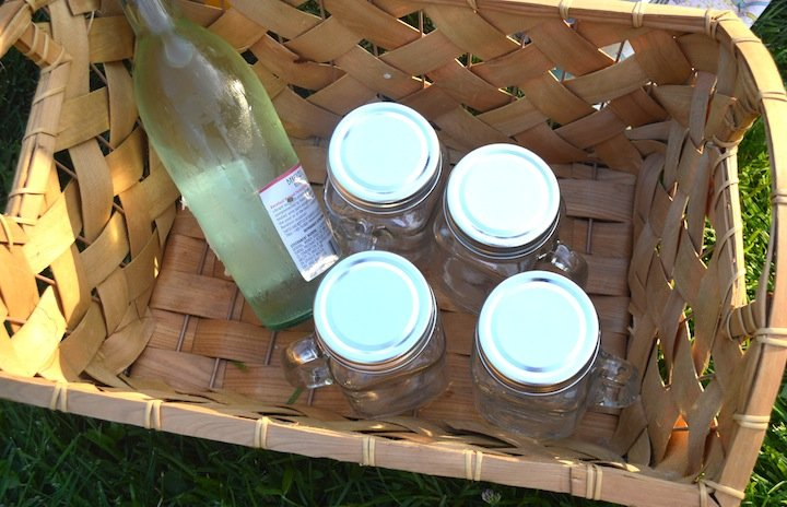 summer, picnic, summer picnic, picnic party, evite, party invites, celebration, celebrate express, cards against humanity, games, adult games, picnic games, barefoot wine, wines for picnic