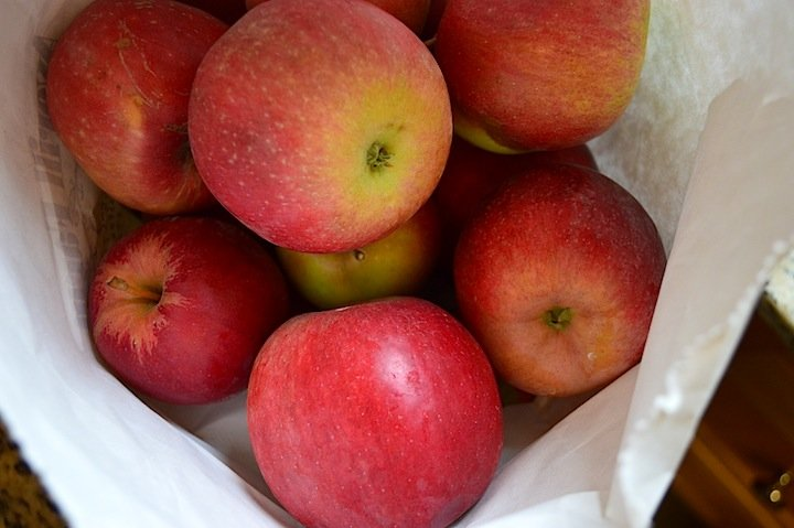apples, apple picking, apple bread, apple recipes, baking recipes, apple cinnamon nut bread, bread recipes, food, desserts, dessert ideas, food, food blogger,