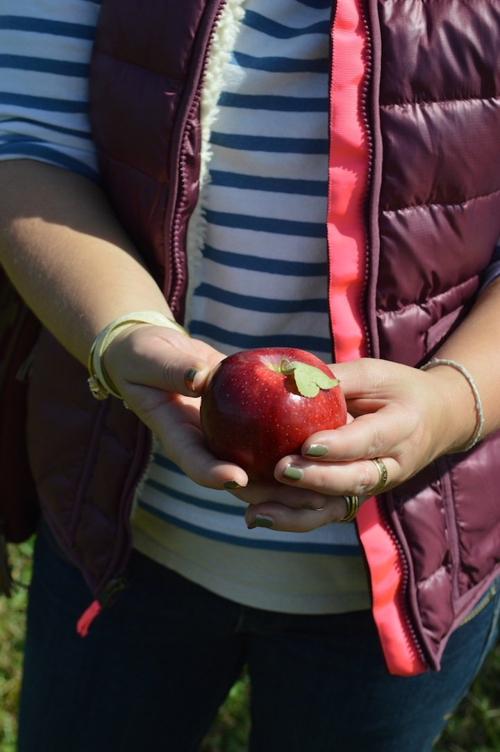 apple picking, crew cuts, j crew, kids clothing, puffy vest, fall fashion, apples