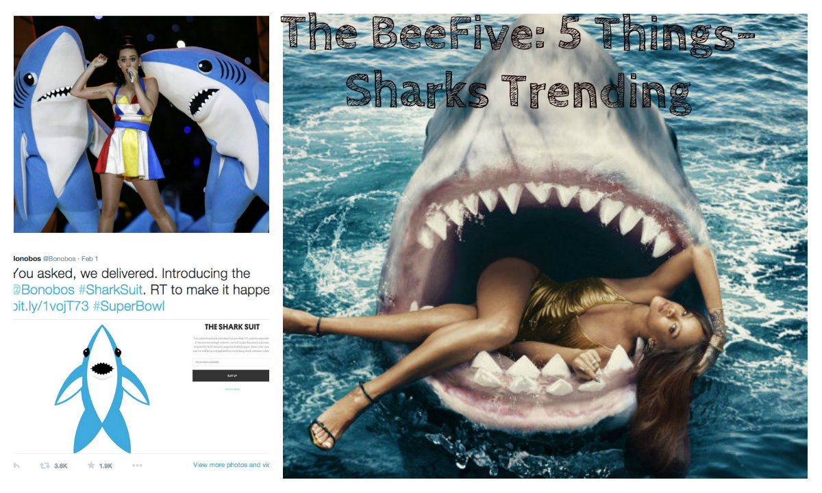 sharks are trending, katy perry sharks, babies, trending , jaws, movies, jaws 40th anniversary