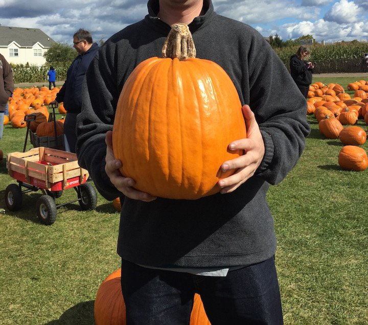 pumpkins, october, pumpkin spice, pumpkin spice latte, halloween, orange october