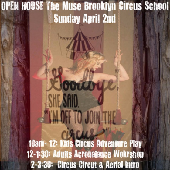 trapeze class, circus school, muse brooklyn, things to do in NYC,