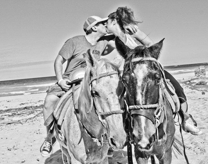 hard-rock-hotel-horses