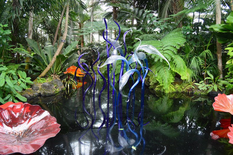 chihuly-nybg-1