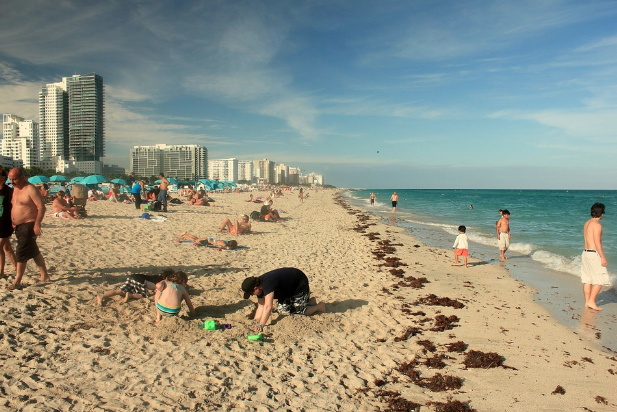 visit miami, visit miami beach, things to do in miami, travel tips, vacation ideas, content writing,