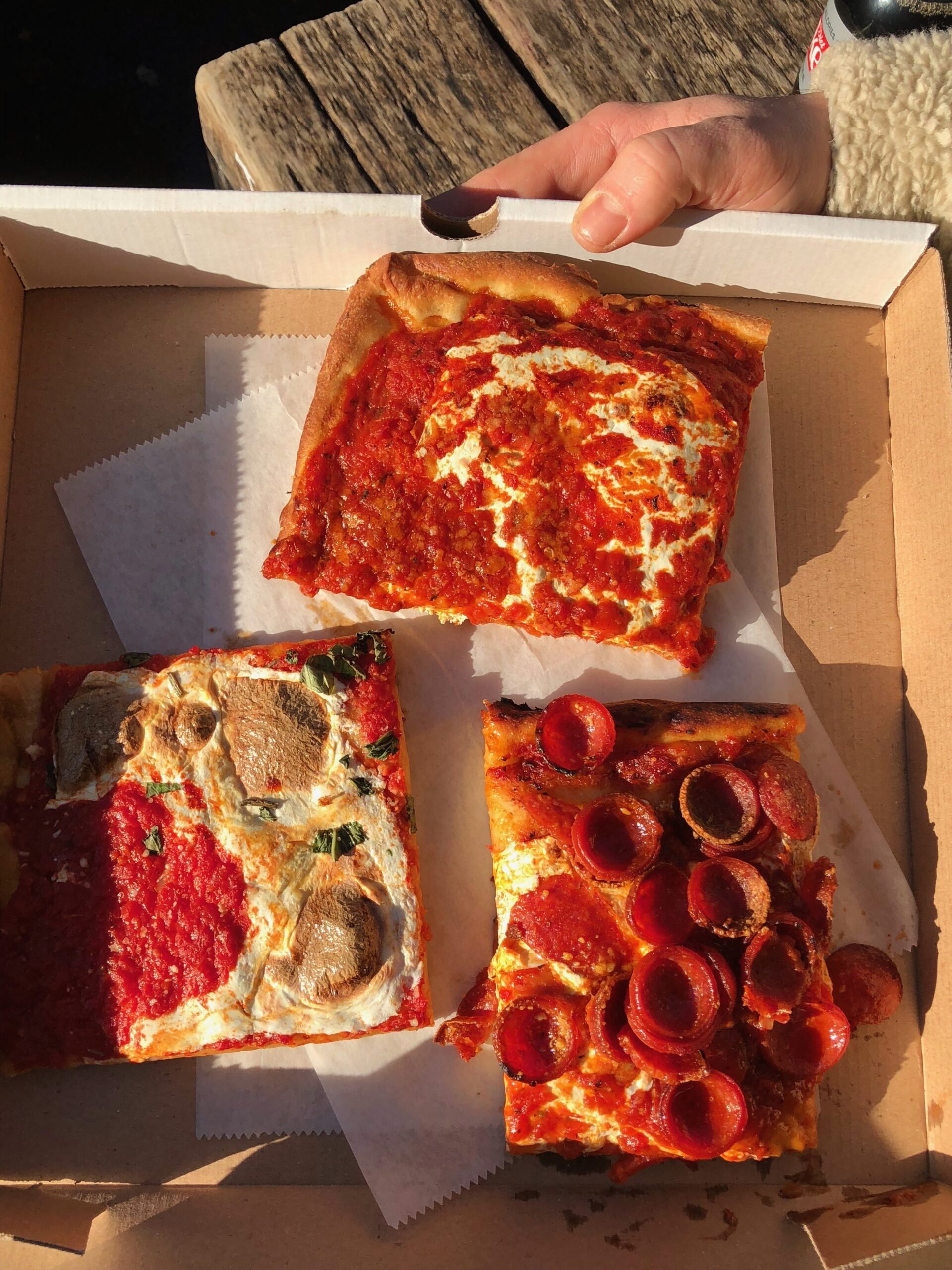 best types of nyc pizzas, nyc pizzas, new york city pizza, best pizza in NYC, NYC pizza